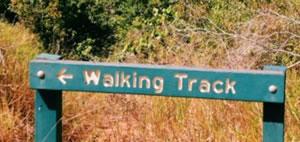 Douglas Track, Speewah